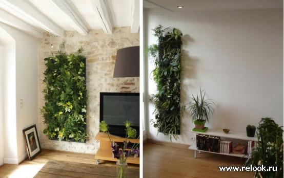 Фото цветов на стену дома